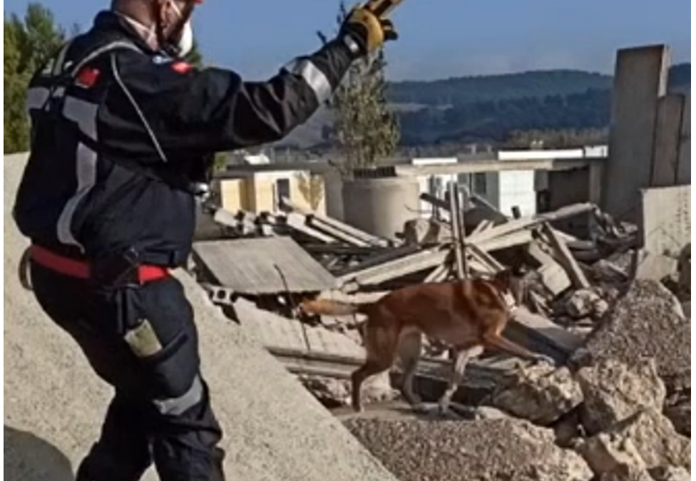 FASTER tools in action – Testing K9 wearables and Smart Textiles Framework indoor and outdoor